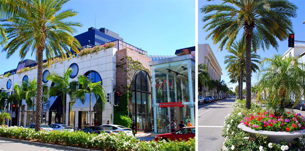 My Trip to Los Angeles, California | Beverly Hills & Santa Monica