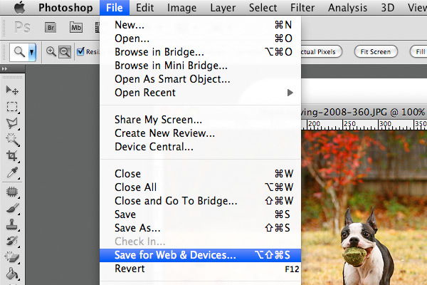 Photoshop Tutorial: Saving and Sizing Your Images for Blogging