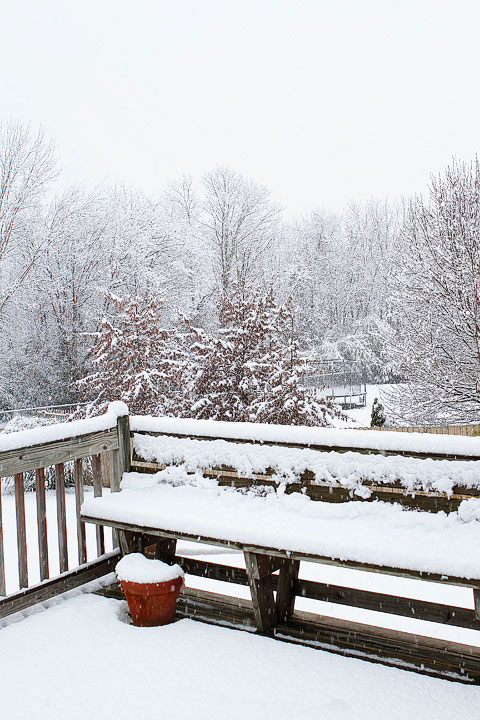 White Christmas in Alabama 2010