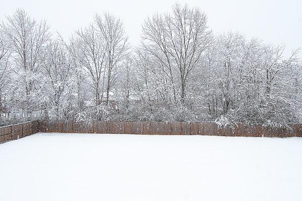 White Christmas in Alabama 2010