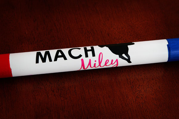 Image of Miley's MACH Bar