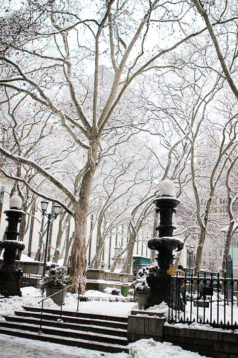 Snow in the City, NYC