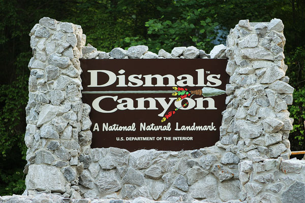 Dismals Canyon in Alabama ~ Glow Worm Caves