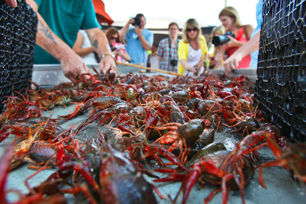 KERRY MALONEY / LOUISIANA SEAFOOD NEWS