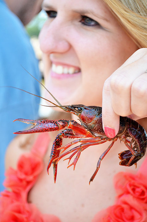 19-crab-and-crawfish-maggy-544