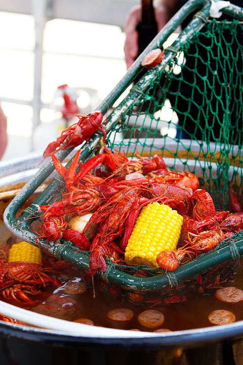 21-crab-and-crawfish-marla-meridith-282