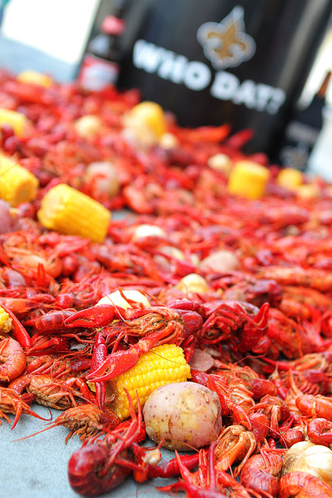 23-crab-and-crawfish-Amanda-987