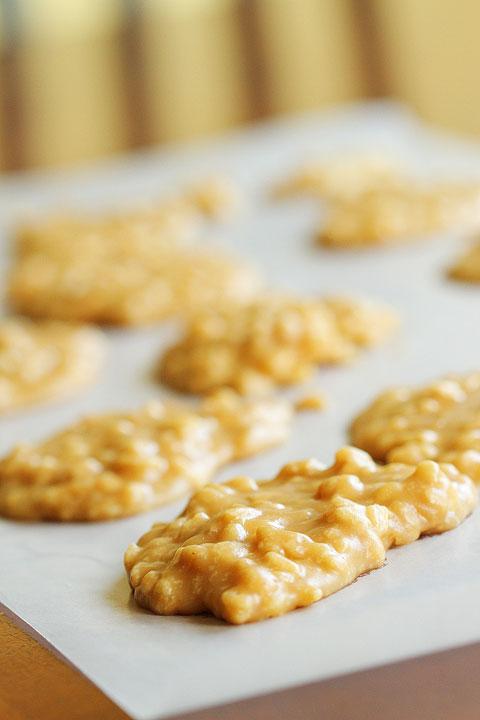 peanut-butter-rice-krispy-pralines-2
