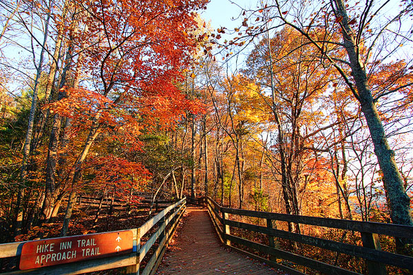 Image of an Autumn Hiking Trail