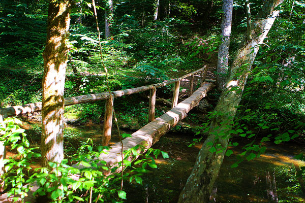 Walls of Jericho Hiking Trail, Alabama