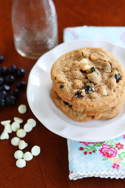 Cinnamon Blueberry Biscoff Breakfast Cookies