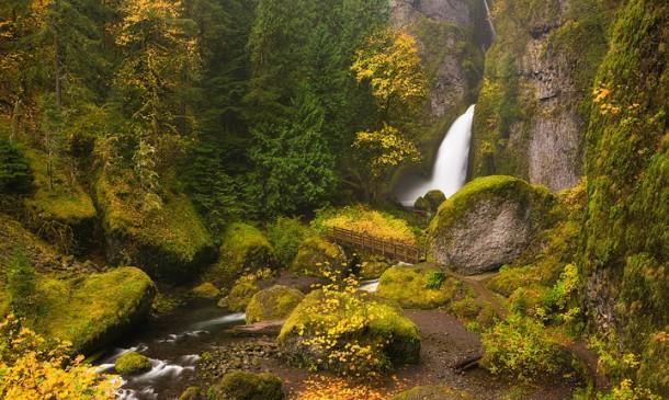Trails to Feast Culinary Road Trip through Oregon