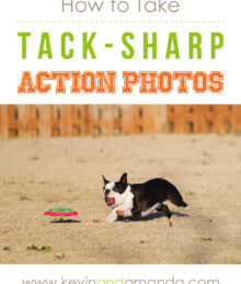 Sharp Action Shot Example
