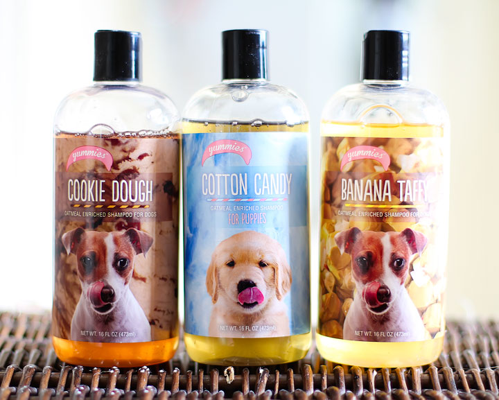 Cookie Dough & Cotton Candy Puppy Shampoo!