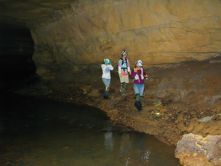 Exploring the Tunnels at Limrock Blowing Cave! 13