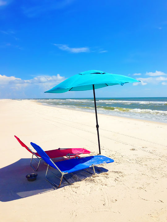 cape-san-blas-florida-pet-friendly-beach-vacation-2013-13