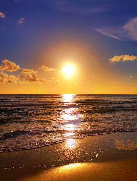 cape-san-blas-florida-pet-friendly-beach-vacation-2013-18