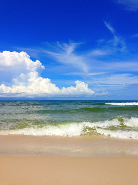 cape-san-blas-florida-pet-friendly-beach-vacation-2013-2