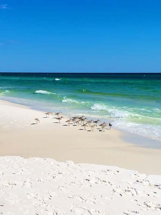 Seaside, Florida Beaches