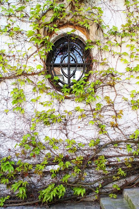 Montmartre, Paris, France. www.kevinandamanda.com #travel #paris #france #photography