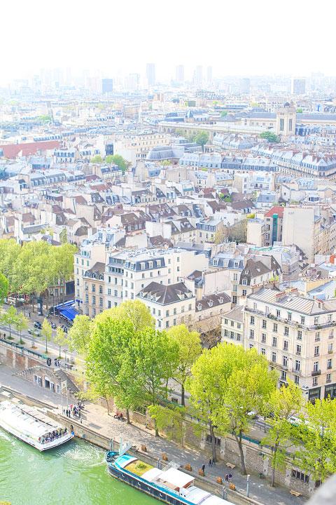 View from Notre Dame, Paris. Tips for planning a Paris Vacation. www.kevinandamanda.com #paris #travel #france