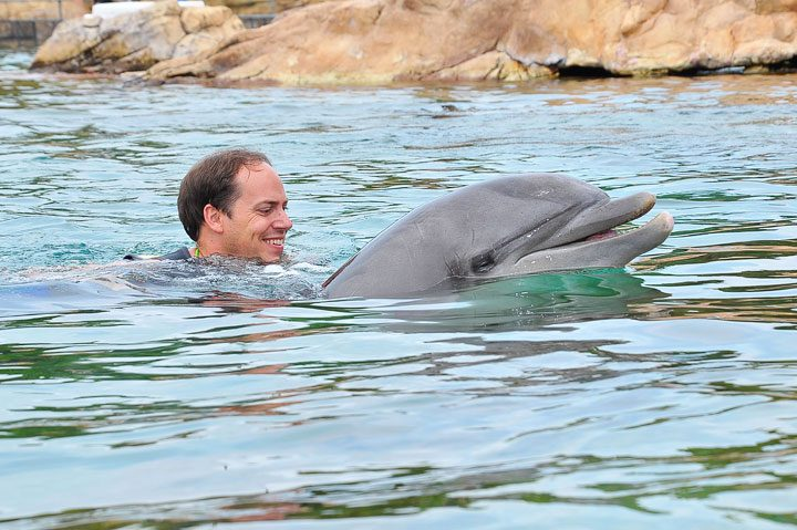 Swimming With Dolphins Orlando