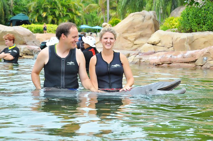 Florida Swimming With Dolphins