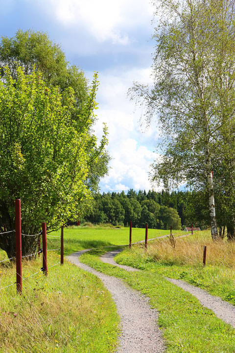 A walk through the Swedish countryside in Spiken, Sweden. #travel #sweden #photography www.kevinandamanda.com