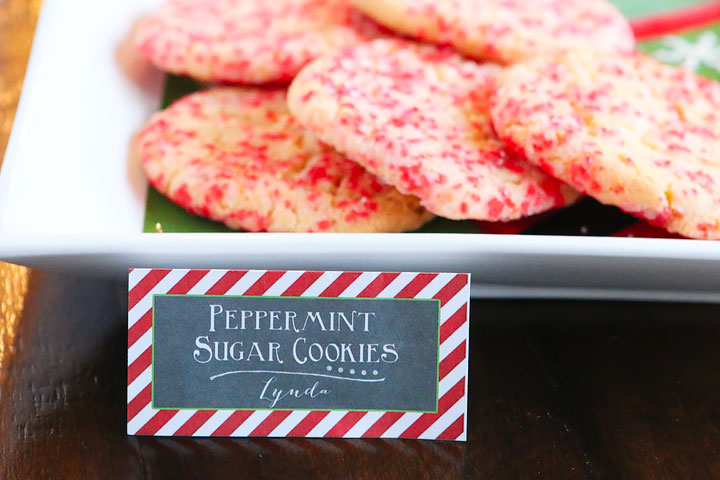 Throw the ultimate Christmas party with cute Christmas themed food and the most awesome hot chocolate bar you have ever seen! Plus tips and recipes for hosting the best cookie swap party on the block.
