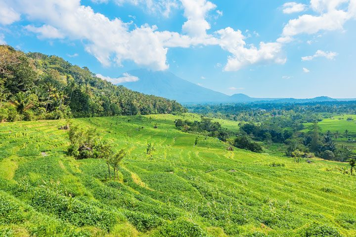 Trekking through rice fields and discovering ancient temples in East Bali.