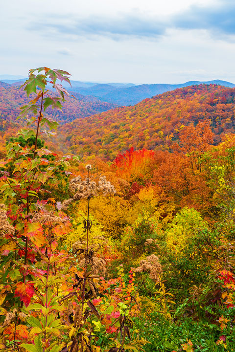 Bucket List Item!!! Drive the Blue Ridge Parkway in Asheville, North Carolina in the fall!