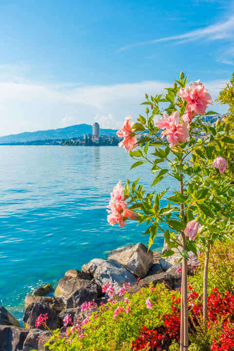 The best food, restaurants, and hotels in Montreux, Switzerland. Why this beautiful lakeside town should DEFINITELY be on your bucket list!!!