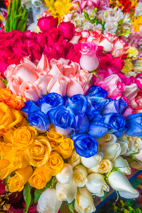 Colorful roses at San Pedro Market in Cusco Peru — Best Things To Do in Cusco Peru