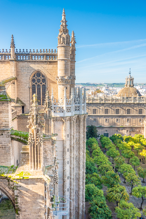 View from Giralda Tower at Seville Cathedral in Seville Spain