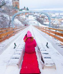 Sledding Quebec City