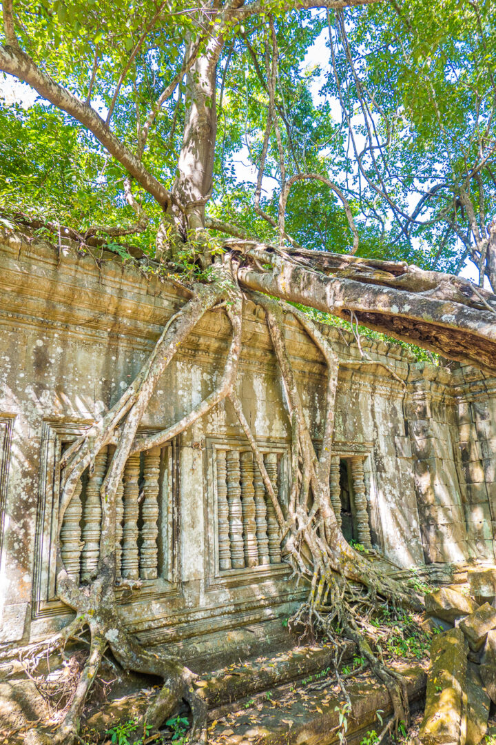 Beng Mealea Temple Cambodia
