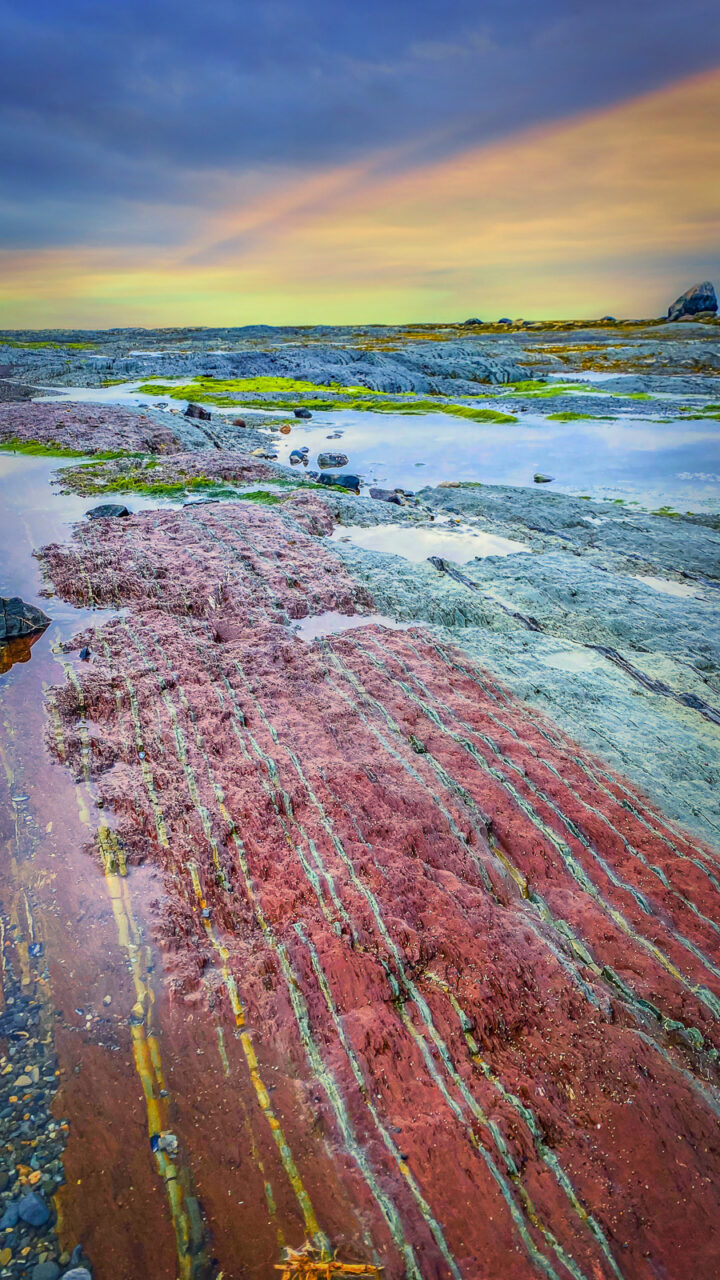 colorful red rocks on the beach in Gaspesie at sunset